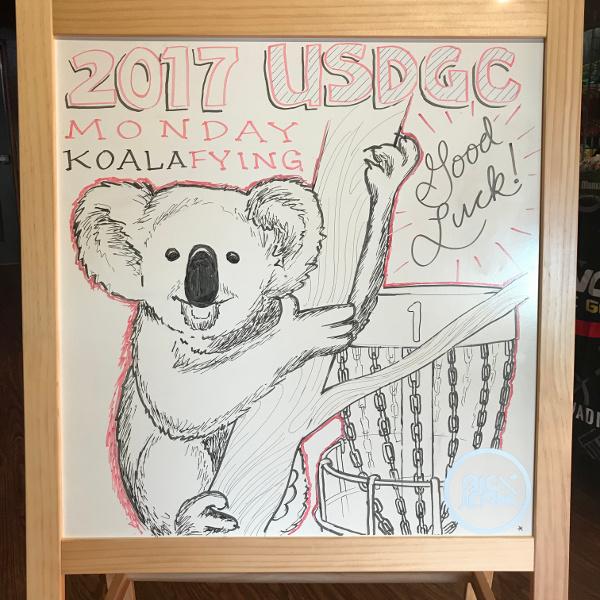 koling koala