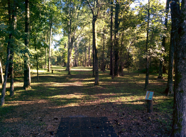 Disc Golf Hole 1